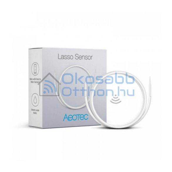 Aeotec Lasso Sensor