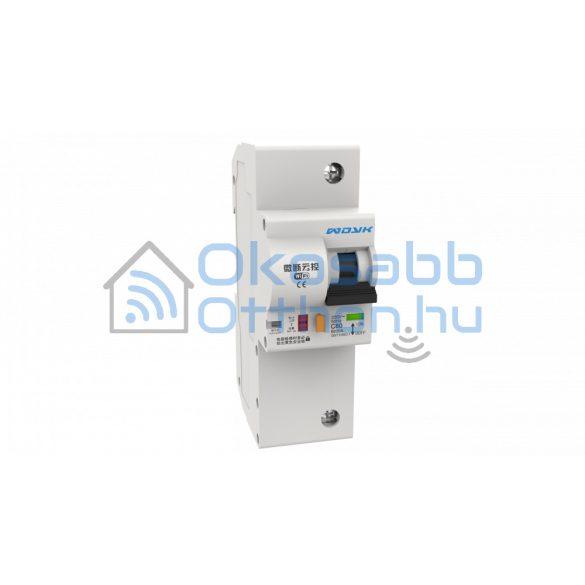 WDYK POW63 egypólusú fogyasztásmérős kismegszakító (63A)