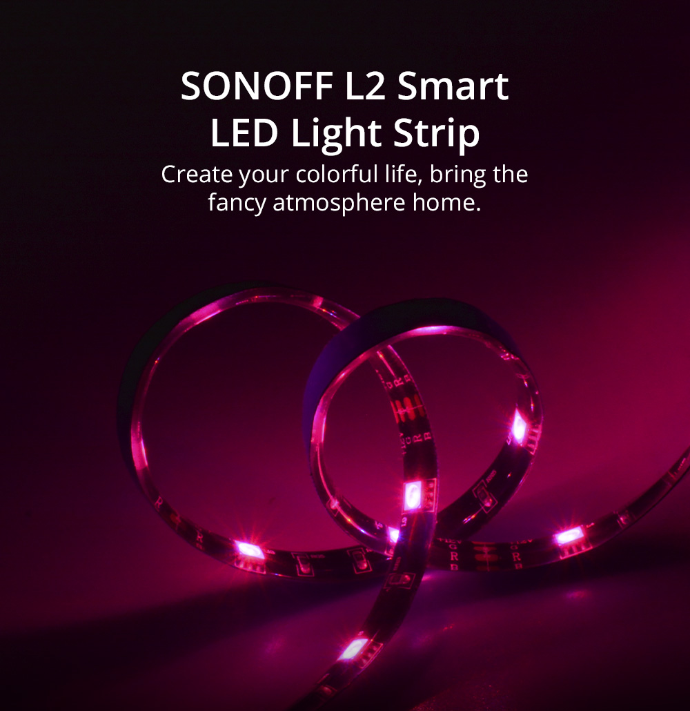 Sonoff L2